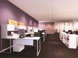 مارجارت مكتب/مكتب طاولة ([لمو01])