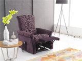 余暇のイタリアの革ソファーの家具(778)