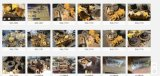 Bomba de petróleo del gato 320c para el excavador