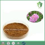 Горячая продавая естественная кислота 2%-98% Corosolic выдержки листьев Banaba