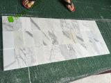 Mattonelle di marmo bianche della parete di Calacatta