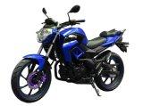 Самые популярные 200cc сбалансированный двигатель воин Dragon Racing мотоцикла