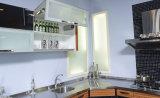 Portello dell'armadio da cucina dallo strato UV del fiore di 18mm (ZX-033)