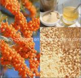 La boisson granulaire sauvage de GMP 100%Natural Seabuckthorn, anticancéreuse, tenue de rayonnements, anti-vieillissement, enlèvent le chloasma, blanchissant, protègent la nourriture biologique de foie