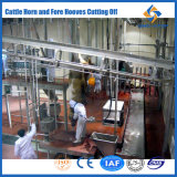 Cattle Slaughtering Abattoir Equipment Machine