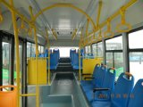 Diesel / CNG / LNG 30-40seats Inter City Bus, 9m City Bus