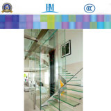 Os painéis de vidro laminado, vitral do prédio para prateleiras