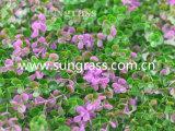 Parede de plástico artificial Decrative grama para decoração de interiores e exteriores (SUNW-MZ00011)
