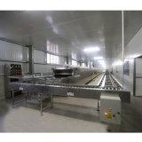 Four professionnel au gaz petit tunnel avec système de contrôle de l'automate