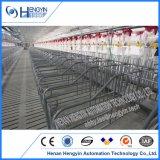 Cage de porcs nouveau design pour la vente de la Caisse de gestation galvanisé