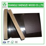 E1/E2 Anti-Slip Shuttering Plywood/Shuttering Plywood/Film Faced Plywood para Construction