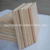 9mm, 12mm, film publicitaire Plyboard de 15mm Linyi