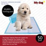 """23 """"X 24"""" Puppy Underpads Dog PEE Pads Wee-Wee Pads (2324-2)"""