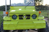 Crucero 110cc 125cc 150cc 200cc ATV de la pista del color verde