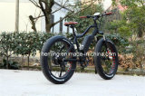 7 속도 바닷가 함 기어 모터 36V 250W/300W/350W 뚱뚱한 타이어 전기 자전거