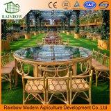 Ecotype Restaurant Greenhouse Invernadero de vidrio comercial usado