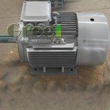 15kw Pmg Magnetische die Generator voor HydroTurbine wordt gebruikt