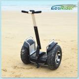 Ecorider 2016 с собственной личности Segwayment колеса дороги 2 балансируя электрический самокат