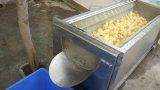 Máquina del cepillo del lavado de la fruta y verdura del aerosol de agua