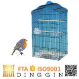 Afrikanisches Grau-Papageien-Vogel-Rahmen