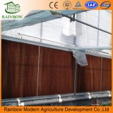 Single Polytunnel double couche en plastique film gonflable en serre