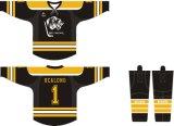 Le service d'ODM de Healong vêtx le hockey sur glace des hommes de sublimation Jersey