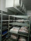 Chambre froide gelée pour la viande et des poissons/entreposage au froid pour la viande