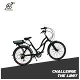 電池が付いている36V 350Wのハブモーター都市電気自転車