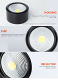 Alojamento da Lâmpada de Teto diferente inclinado para a opção Color Marcação COB superfície LED de 5 W em destaque