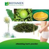 Apports nutritionnels de la perte de poids Herbal Slimming Capsule