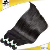 Cheveux humains normaux du cheveu 100% de Brésilien de la Vierge 10A