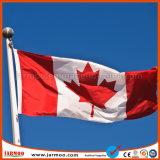 De hete Duurzame Vlaggestok van de Verkoop met Vlag Customed