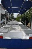 Bateau de pêche côtière de fleuve de bateau de touristes de Liya 19feet