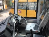 9mの長距離39-43seats観光バスのコーチ