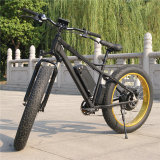 Ce moteur approuvé 750W vélo électrique Sell-Price Fatbike avec l'usine