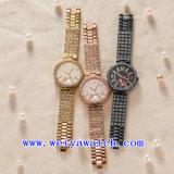 Reloj de las señoras del ODM del reloj del acero inoxidable (WY-G17004B)