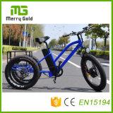 Motor de tracción delantera E Trikes neumático Fat E-triciclo para el adulto de 3 ruedas triciclo eléctrico