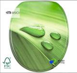 La norma europea de MDF Universal antibacteriano de alto brillo hermoso diseño los asientos de inodoro