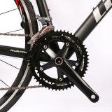 알루미늄 합금 도로 자전거 16 속도 Shimano Claris 2400 알루미늄 자전거