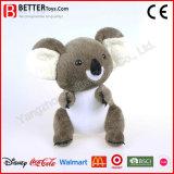 ASTM realista recheadas de pelúcia Urso Koala Programável Animal Toy