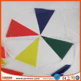 Outdoor Colorful EP Bunting Flag