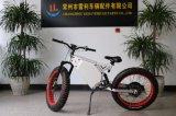 حارّ يبيع 2017 خضراء مدينة درّاجة كهربائيّة سمين