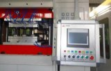 Volles automatisches Wegwerfplastikcup, Thermoforming Maschine produzierend