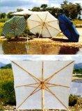 De Paraplu van de zon