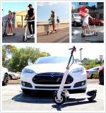 2018 Nuevo diseño de bicicleta eléctrica plegable Kit Eléctrico