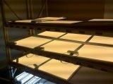 LEIDENE Lichte Vierkante LEIDEN 1X1FT/2X2FT/1X4FT/2X4FT 20With25With30With32With35With36With40With50With60With70With72With75W van het Comité Comité met Bestuurder Lifud