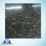 Золотистый Цвет черного цвета из гранита декоративных материалов из камня Honeycomb панелей для наружной стены оболочка/ кухня/ Counter-Top