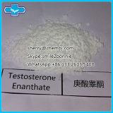 Мышца строя тестостерон Enanthate порошка анаболитного стероида
