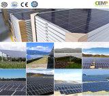 Le offerte creative del comitato solare di giro 270W hanno sfruttato il futuro di energia