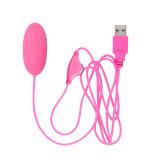 Het mini Speelgoed van het Geslacht USB Vibromasseur van de Snelheid van de Vibrator van de Kogel Regelbare voor Stimulator van de Clitoris van het Ei van Vrouwen de Krachtige Trillende